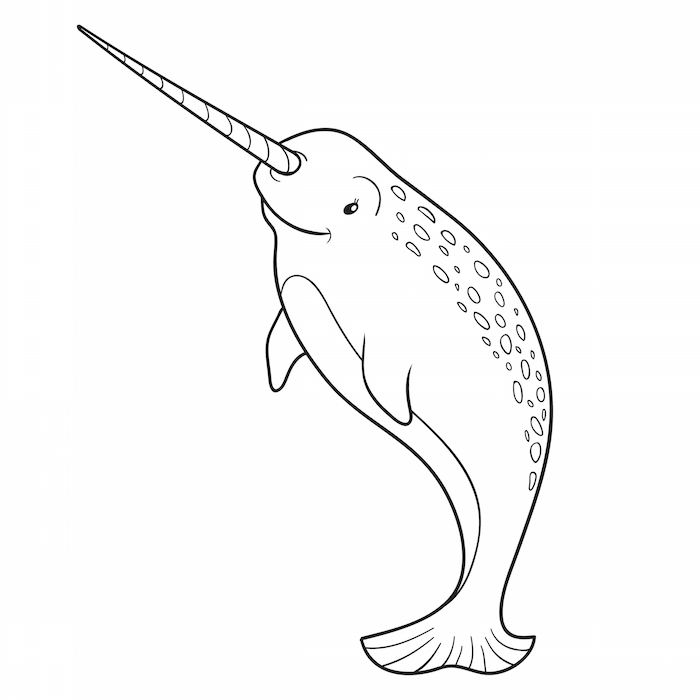 Narwhal whale coloring page on KidsStuffWorld.com