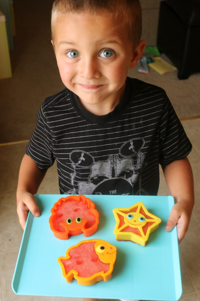 Cookie cutters to make watermelon shapes!