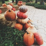 Love the look of these stacked pumpkins