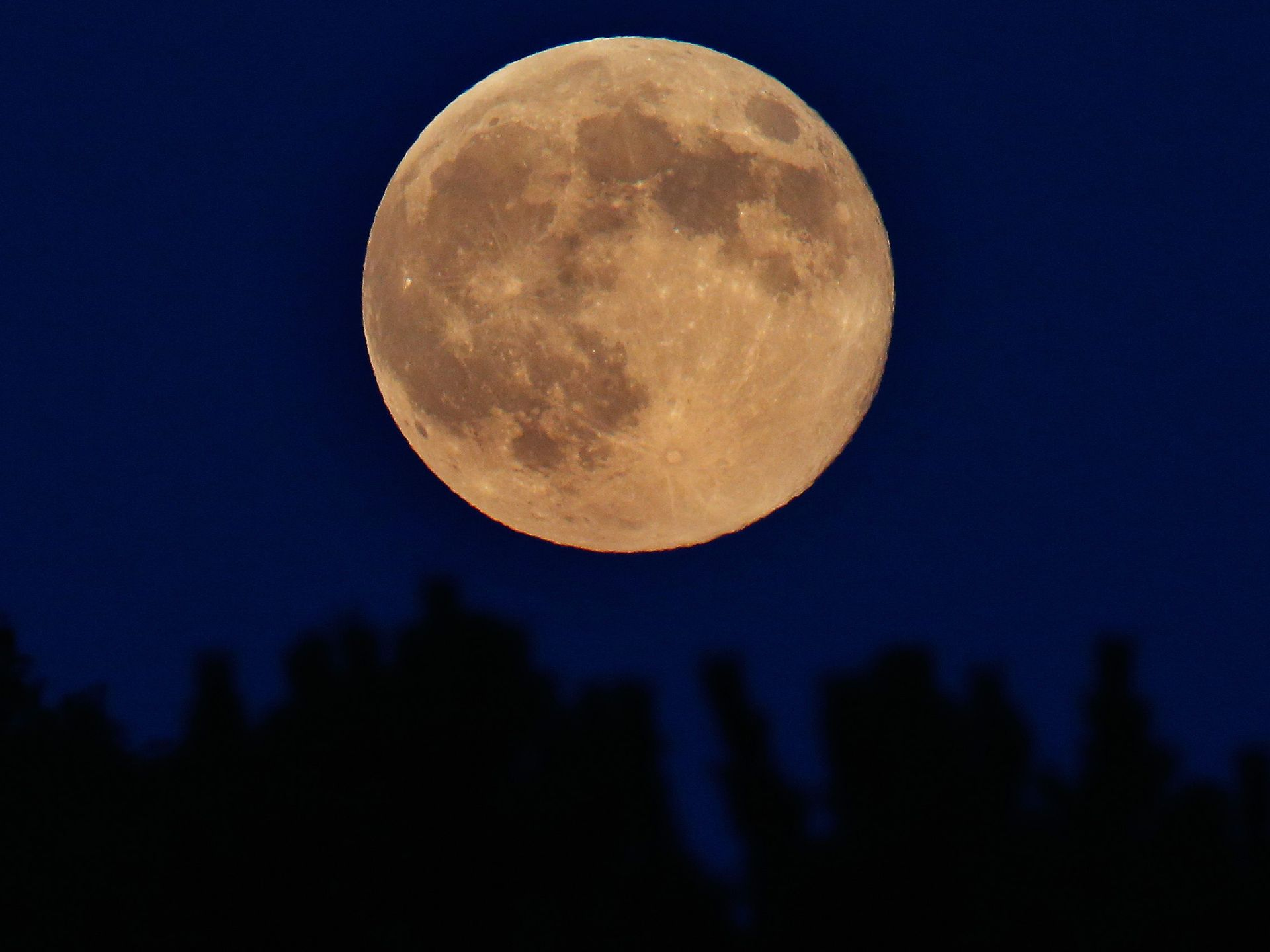 A supermoon rises over the trees in Spencer, New York, on Aug. 10, 2014. (Photo: Tom Pennington, Getty Images)