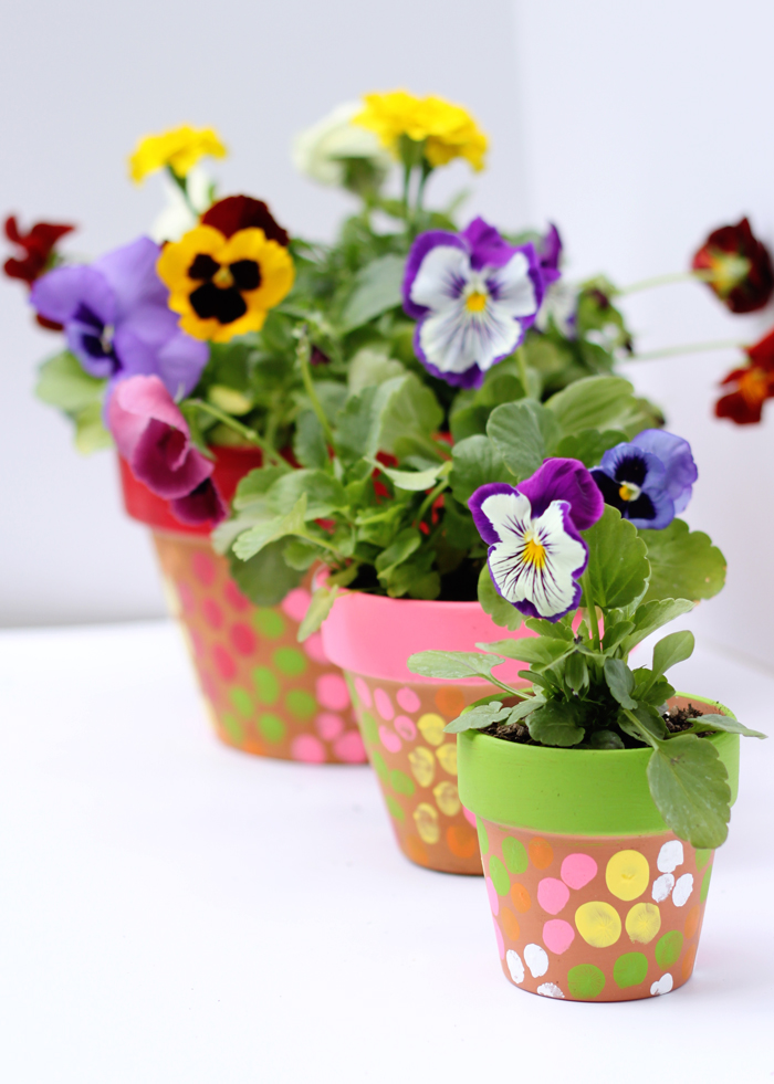 Fingerpainted flower pots! What a great springtime craft for kids