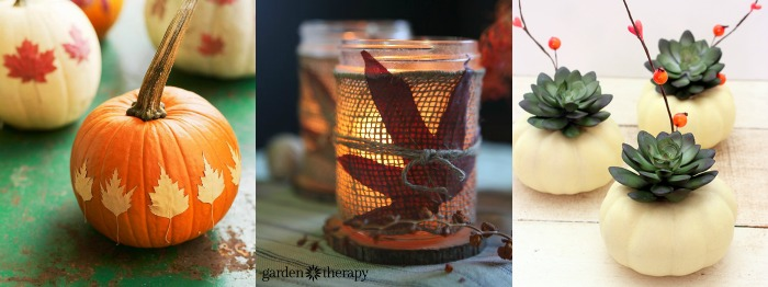 Fall party centerpiece ideas, these are so simple & pretty!