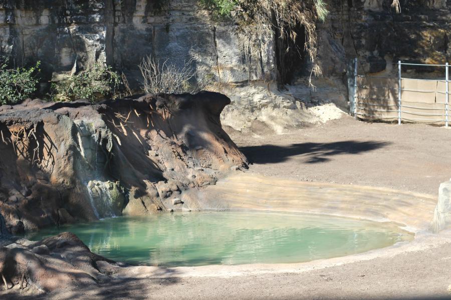 recirculating-water-hole-san-antonio-zoo-x