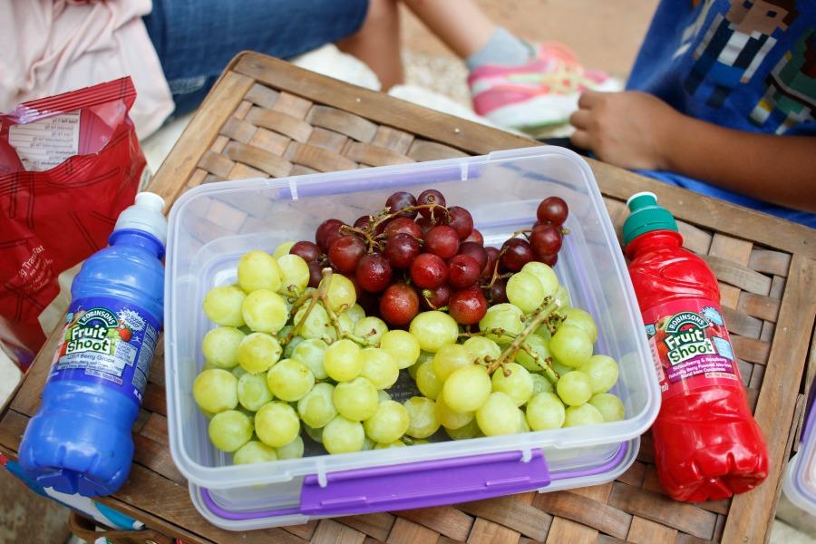 picnic-mission-concepcion